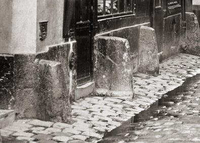 rue-suger-detail